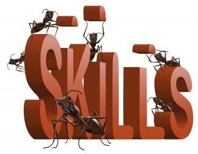Gaining and strengthening 'soft skills' for employment through ...